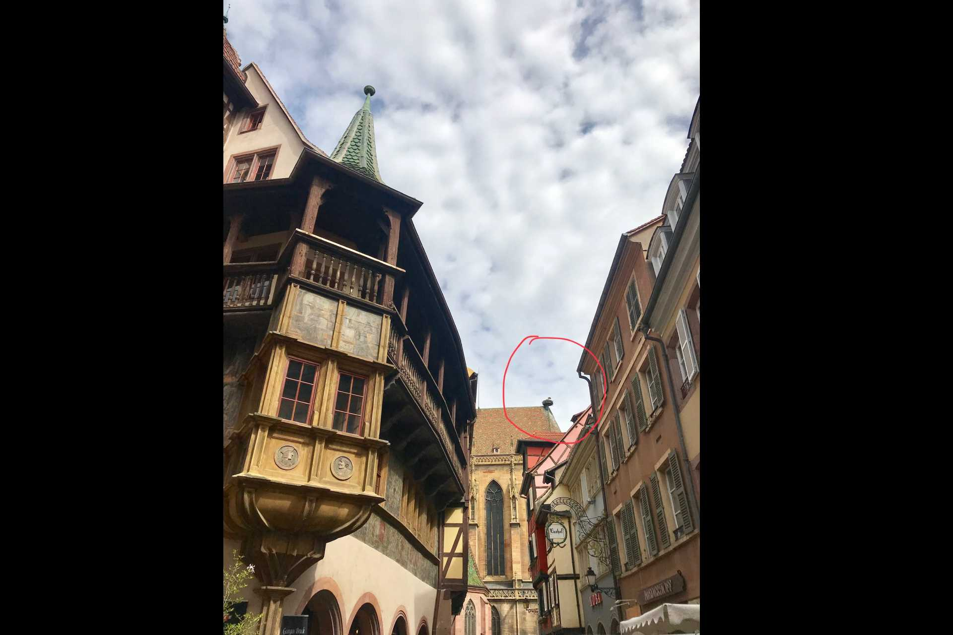 16th century richly decorated Merchat's house - Maison Pfister on the right, look up towards St Martin and you will see Mr and Mrs Martin & Martine Stork's nest(named after the church where they chose to build their nest)